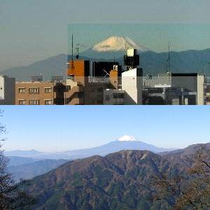 東京の席からの富士と大山北尾根からの富士