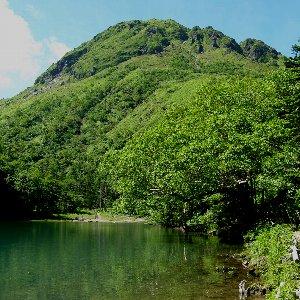 弥陀ヶ池から仰ぐ白根山
